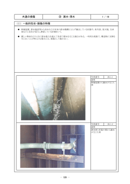 1 / 19 共通の損傷 ⑳ 漏水・滞水 (Ⅰ) 一般的性状・損傷の特徴