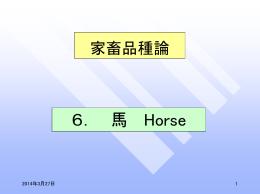 6. 馬 Horse