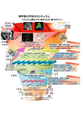 理学部化学科のカリキュラム - 北海道大学 理学部化学科