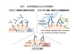図4 抗体医薬品の主な作  機序