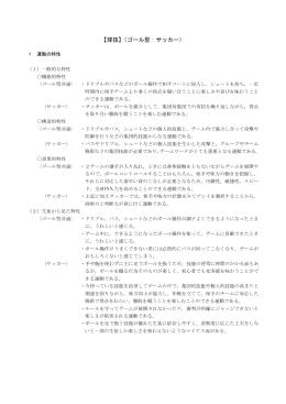 【球技】(ゴール型:サッカー) E-20