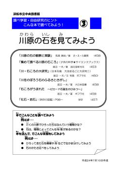 川原の石について調べたい(PDF:121KB)