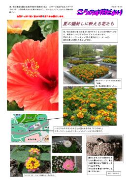 こうのす花だより - 鴻ノ巣山運動公園