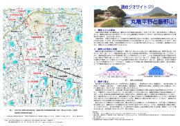 丸亀平野と飯野山 - 工学部