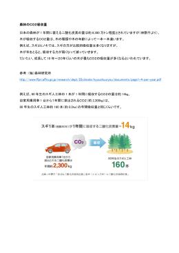 森林のCO2吸収量 日本の森林が 1 年間に蓄える二酸化炭素の量は約