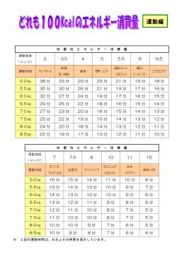 100Kcalの運動の目安(PDF:213KB)