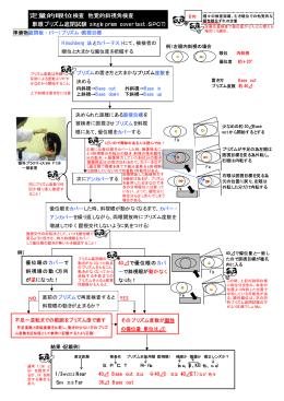 定量的眼位検査 他覚的斜視角検査 (単眼プリズム遮閉試験:single