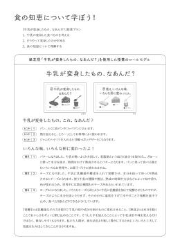 解説資料 (PDFファイル 1.3MB)