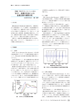Ⅶ-21:各種分光法による 金属元素の価数分析