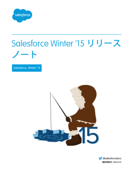 Salesforce Winter `15 リリースノート
