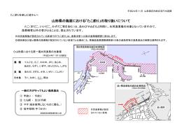 山形県の海面における「たこ釣り」の取り扱いについて