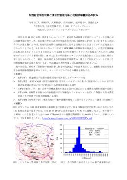 飯舘村全域を対象とする放射能汚染と初期被曝量評価の試み