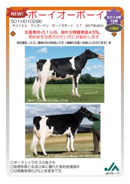 501HO10296 生産寿命+5.1ヵ月、娘牛分娩難易度4.5%、 受胎率を