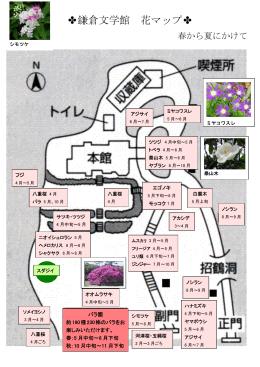 花マップ(春から夏にかけて)
