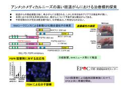 アンメットメディカルニーズの高い胆道がんにおける治療標的探索