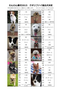 2015クオリファイ進出犬決定!