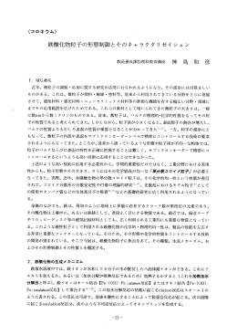 鉄酸化物粒子の形態制御とそのキャラクタ リゼイ ショ ン