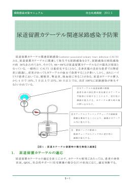 5.尿道留置カテーテル関連尿路感染予防策(PDF:1396KB)