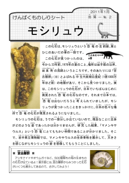 No.2 モシリュウ