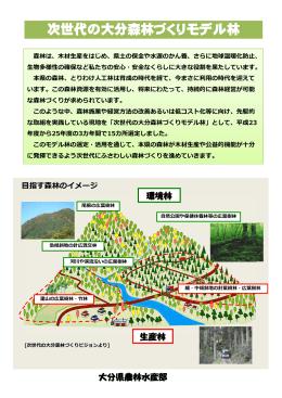 次世代の大分森林づくりモデル林 [PDFファイル/5.12MB]