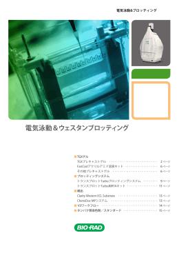 電気泳動&ウェスタンブロッティング - Bio-Rad