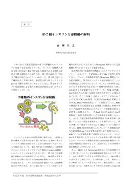 第2相インスリン分泌機構の解明