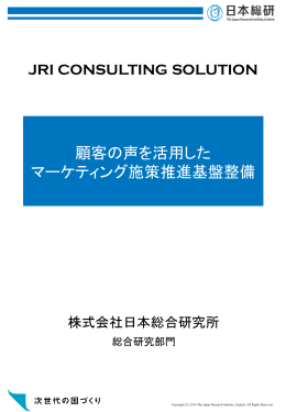 顧客の声を活用したマーケティング施策推進基盤整備(PDF