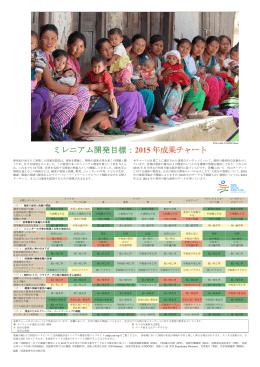 ミレニアム開発目標:2015 年成果チャート
