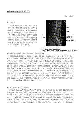 腰部脊柱管狭窄症について 金 明博