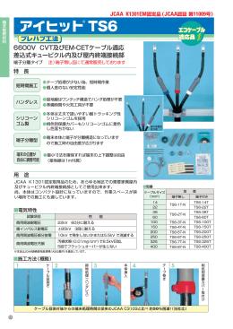 アイヒット TS6(PDF 524KB)