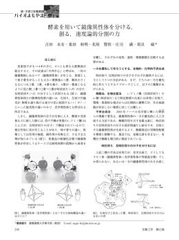 酵素を用いて鏡像異性体を分ける, 創る,速度論的分割の力