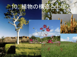 10,植物の構造と生理