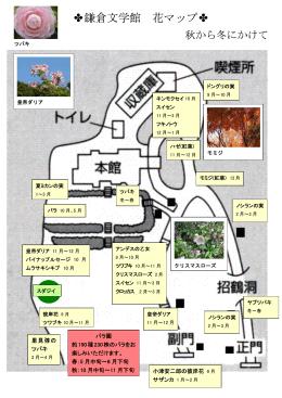 花マップ(秋から冬にかけて)