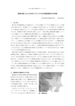 関東内陸における大気エアロゾル中の有機指標成分の挙動