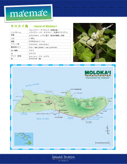 モロカイ島 Island of Moloka`i - Hawaii Tourism Authority