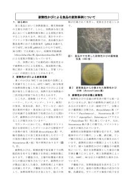 「耐熱性かびによる食品の変敗事例ついて」 (PDF: 312.2 KB)
