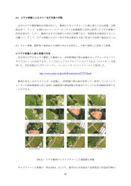 83 4.4 ビデオ画像によるオルソ空中写真の作製 近年のビデオ