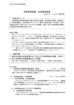 知的財産保護・活用推進事業(PDF:1325KB)