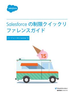 Salesforce の制限クイックリファレンスガイド