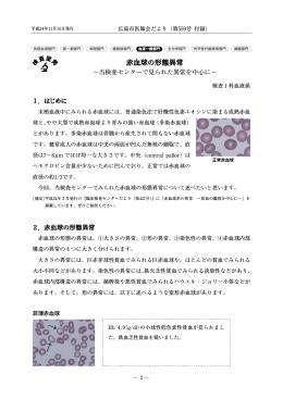 赤血球の形態異常 - 一般社団法人 広島市医師会臨床検査センター