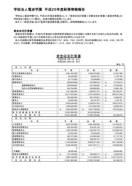 平成25年度財務概要(PDF)