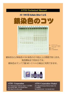 \\Nas-pig\Ishida\AE-1360銀染 コ