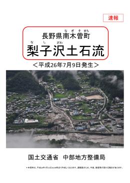 梨子沢土石流 - 国土交通省中部地方整備局