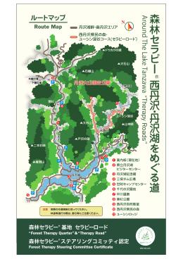 森林 セ ラ ピ ー 西 丹 沢 ・ 丹 沢 湖 を め ぐ る 道