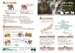 本体 - 兵庫県森林動物研究センター