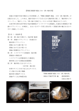 【THE DEEP SEA 日本一深い駿河湾】 東海大学海洋学部の教員らが