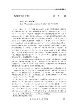 熱帯の有用材 (3) - jifpro.or.jp