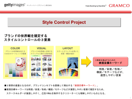 Style Control Project