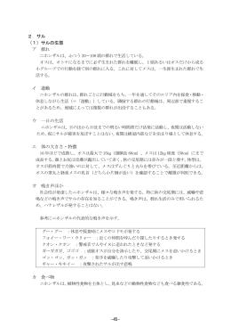サル(PDF:722KB)