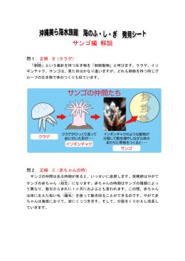 サンゴ編 解説